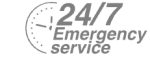 24/7 Emergency Service Pest Control in Soho, W1. Call Now! 020 8166 9746